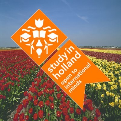 Top 5 Netherlands Excellence Scholarships for International Students
